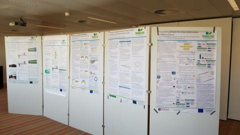 Poster Session on TRANSrisk findings from Case Studies