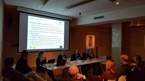 Discussion on trade-offs and synergies between climate, economic and sustainable development goals at global scales. With Tom Van Ierland, Keywan Riahi, Michael Grubb, Detlef van Vuuren, Heleen van Soest, Andreas Tuerk, and Karl Steininger